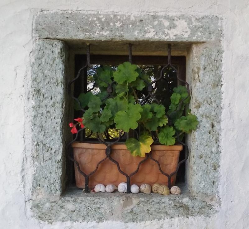 okno_blizu